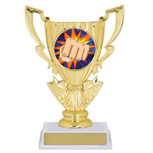 trophy-achievement cup-martial arts