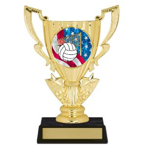trophy-achievement cup-volleyball