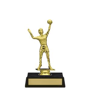 trophy-achiever series I-volleyball