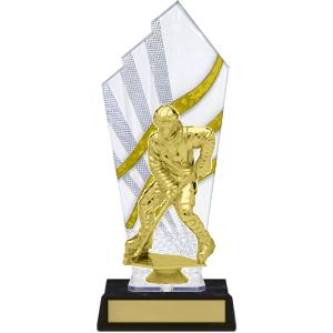 trophy-diamond series I-hockey