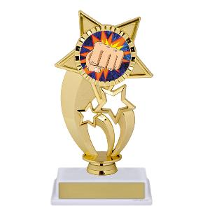 trophy-gold under star-martial arts