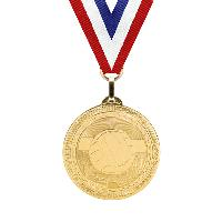 medal-britelazer series-volleyball