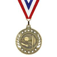 medal-galaxy series-volleyball