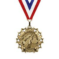 medal-ten star series-pinewood derby