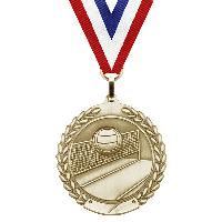 medal-merit series-volleyball