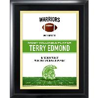 plaque-team series football