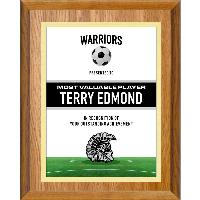 plaque-team series soccer