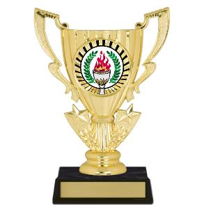 trophy-achievement cup-equestrian