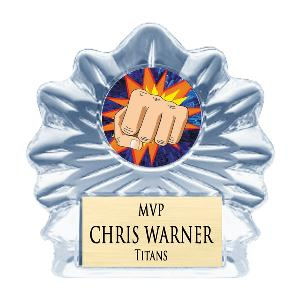 trophy-clear flame sculpted ice-martial arts karate
