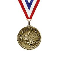 medal-star series-academic