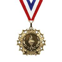 medal-ten star series-victory
