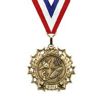 medal-ten star series-science