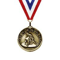 medal-star series-wrestling