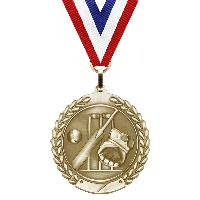 medal-merit series-cricket