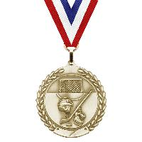 medal-merit series-hockey