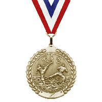 medal-merit series-martial arts