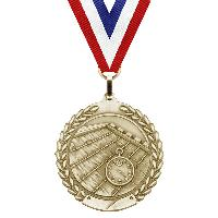 medal-merit series-swimming