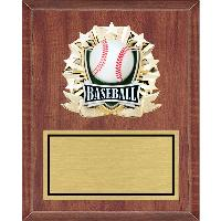 plaque-all star mount medallion