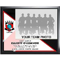 plaque-team photo series II